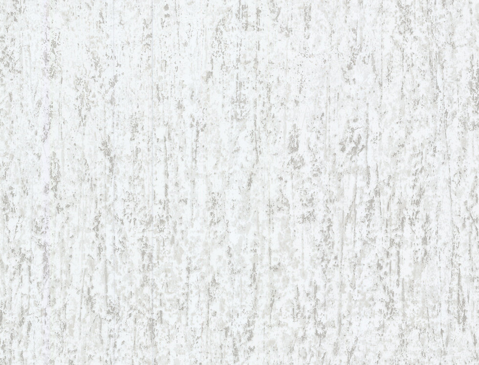 Cole & Son - Foundation Concrete White 92/3014