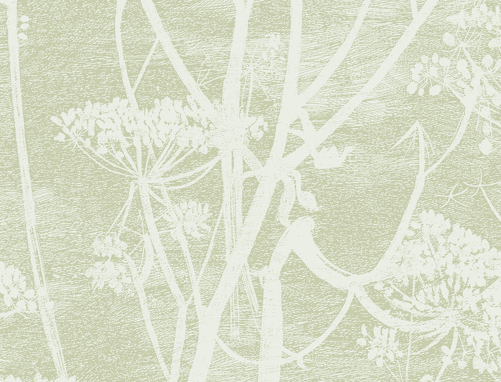 Cole & Son - Icons Cow Parsley Olive 112/8029