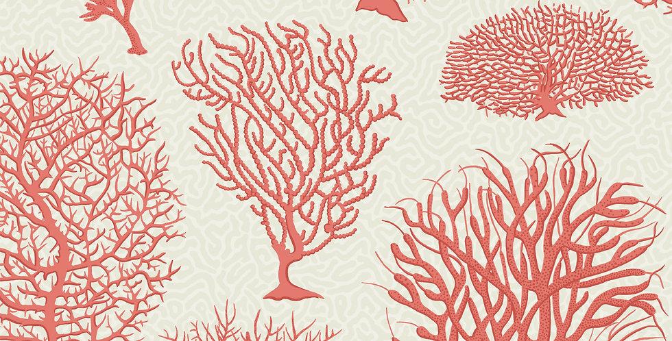 Cole & Son - Curio Seafern Coral 107/2011