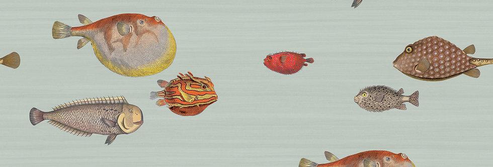 Cole & Son - Fornasetti Senza Tempo Acquario Seafoam 97/10030