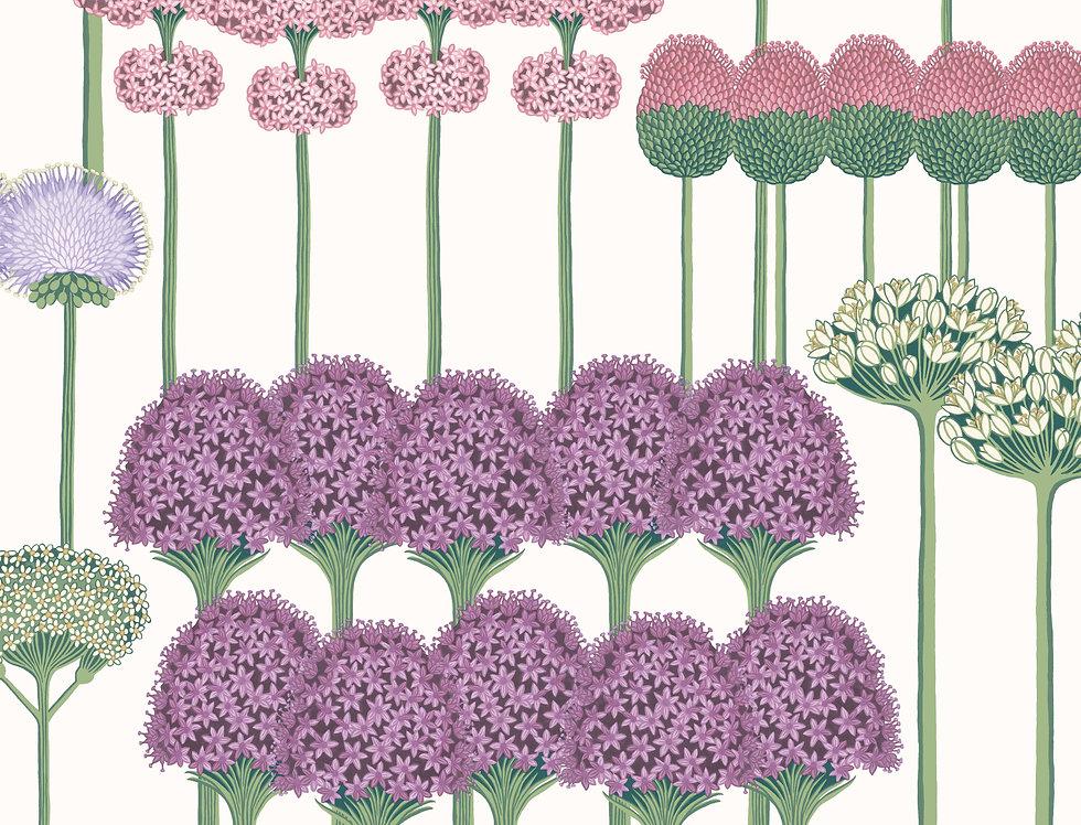 Cole & Son - Botanica Allium Mulberry, Blush & Lilac on White 115/12034
