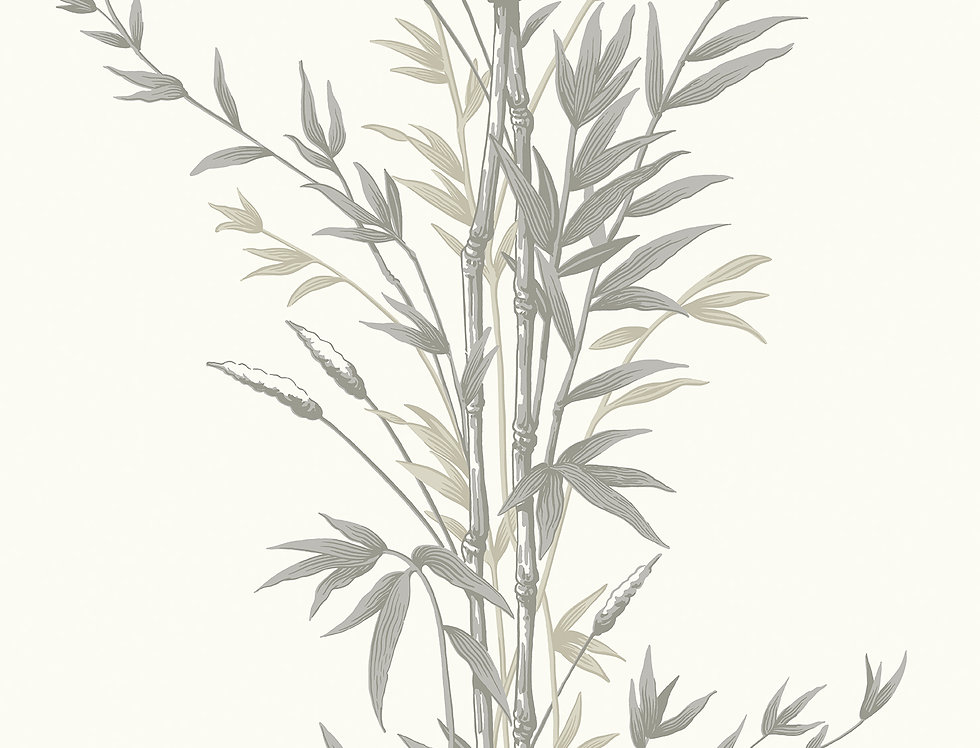 Cole & Son - Archive Anthology Bamboo Charcoal 100/5025