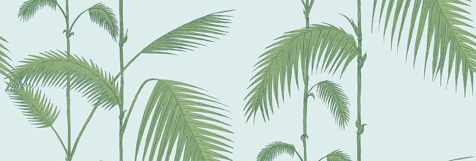 Cole & Son - The Contemp Coll Palm Leaves Leaf Green on Sea Foam 66/2010