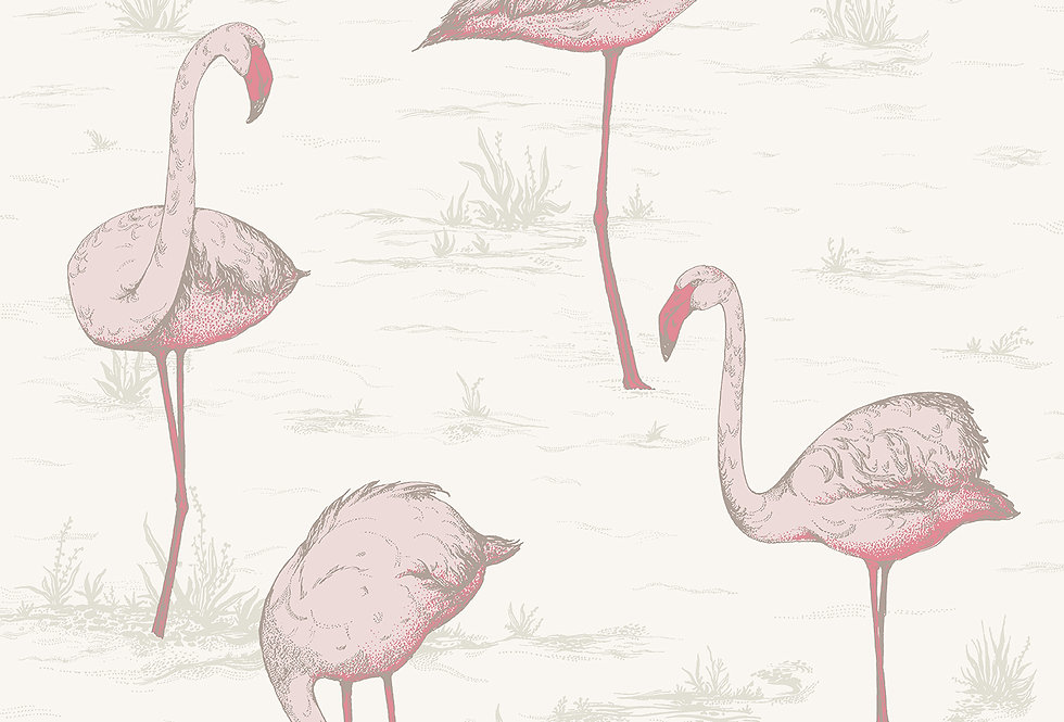 Cole & Son - Contemporary Restyled Flamingos Pink on White 95/8045