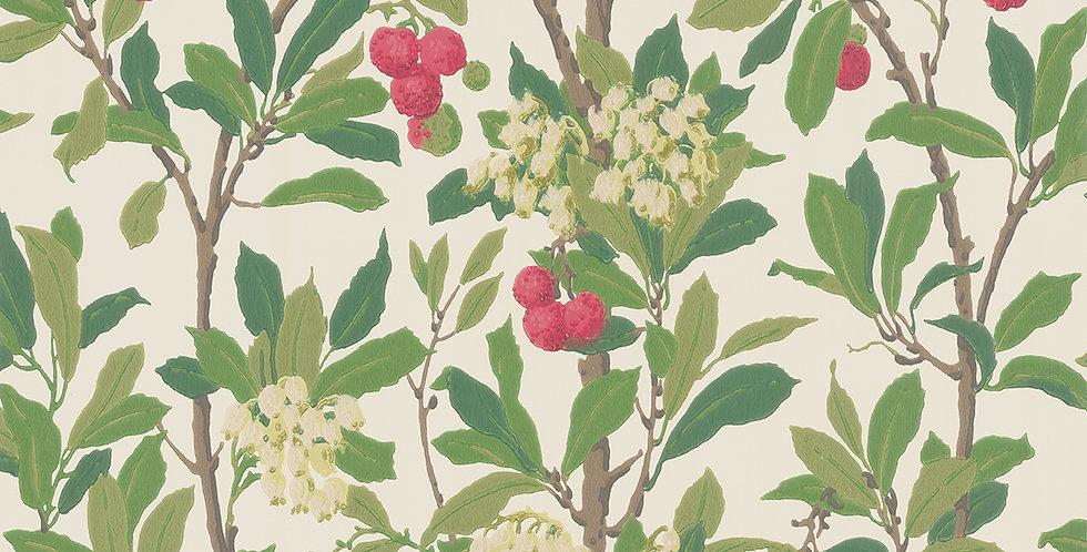 Cole & Son - Archive Anthology Strawberry Tree Scarlet & Ivory 100/10049