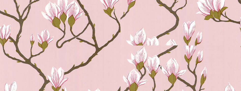 Cole & Son - The Contemp Coll Magnolia Rose on Blush 72/3009