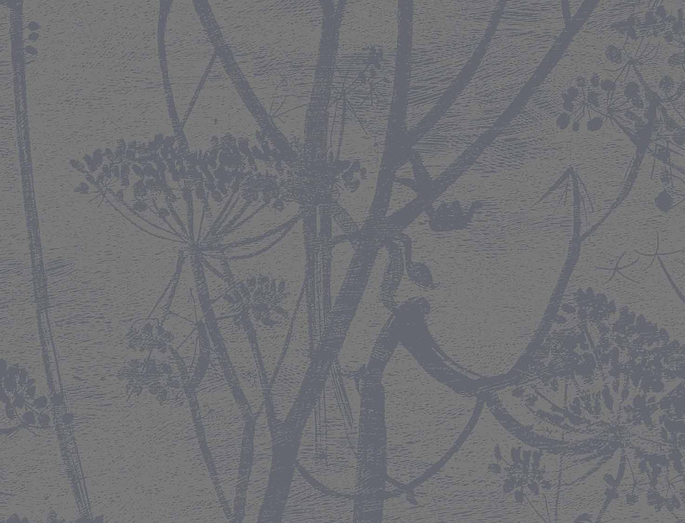 Cole & Son - Contemporary Restyled Cow Parsley Gilver on Black 95/9050