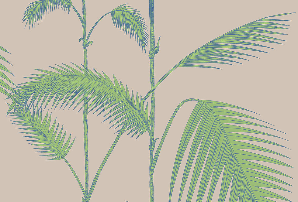 Cole & Son - New Contemporary Palm Leaves Green 66/2011