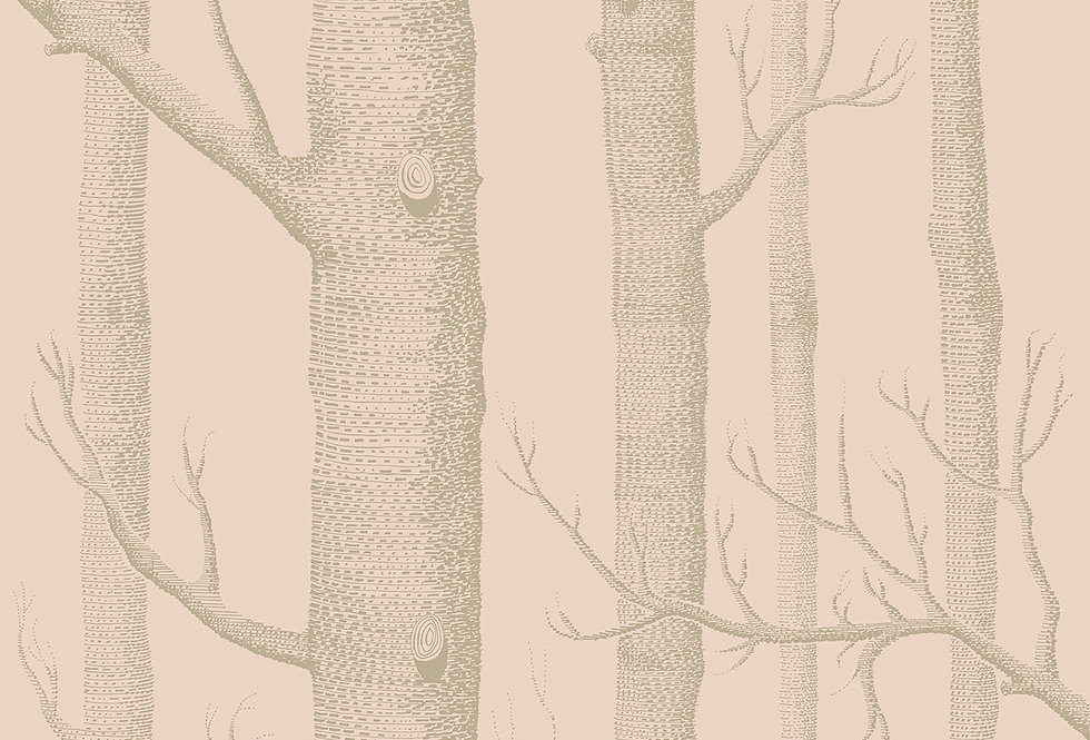Cole & Son - Whimsical Woods Pink & Gilver 103/5024
