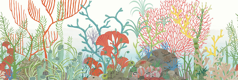 Cole & Son - Whimsical Archipelago Border Multi-Coloured 103/12054