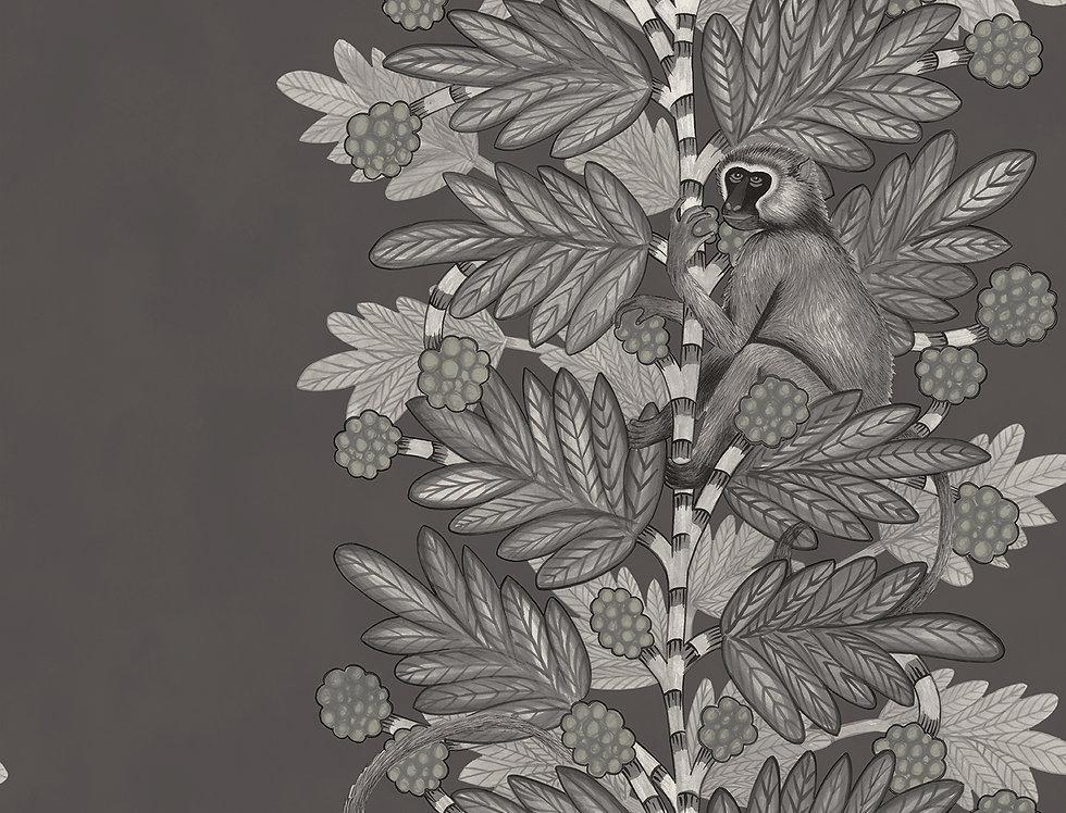 Cole & Son - Ardmore Acacia Charcoal + Silver 109/11055