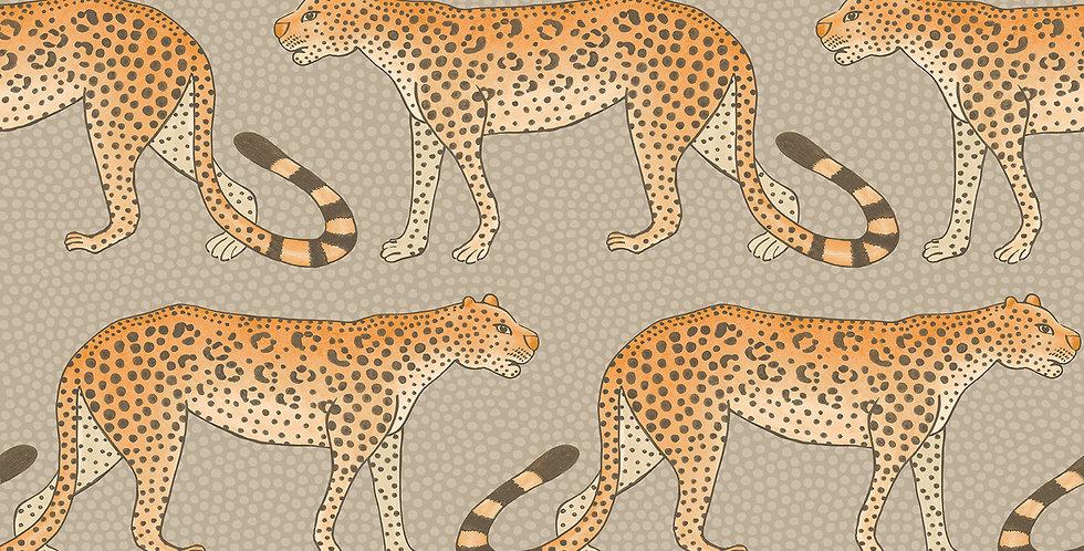 Cole & Son - Ardmore Leopard Walk Stone Orange 109/2010