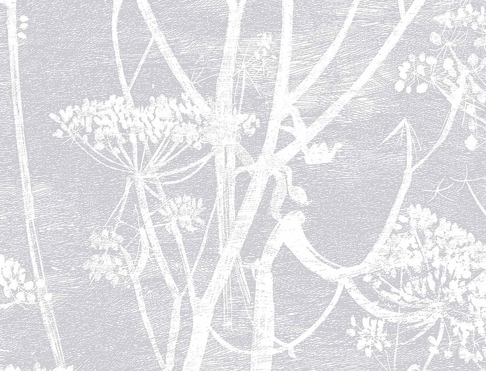 Cole & Son - Contemporary Restyled Cow Parsley Lilac 95/9049