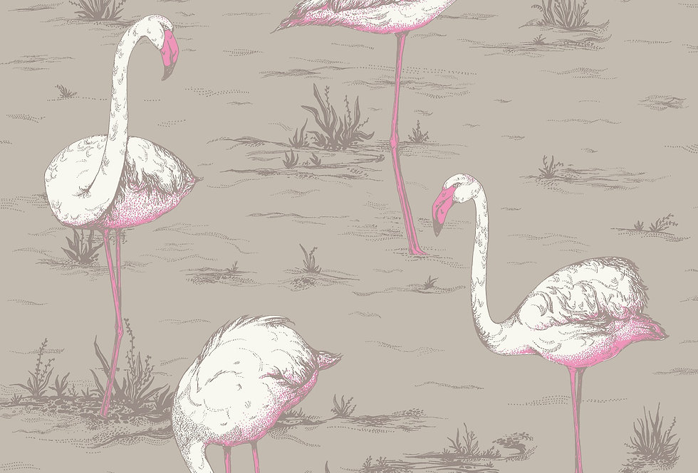 Cole & Son - The Contemp Coll Flamingos White & Fuchsia on Taupe 66/6042
