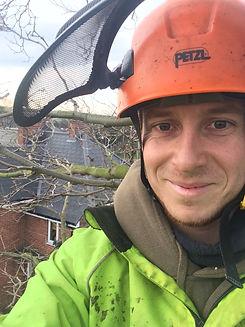 Tree Surgeon Sheffield