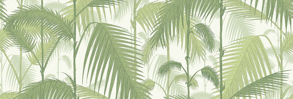 Cole & Son - Contemporary Restyled Palm Jungle Green on White 95/1001