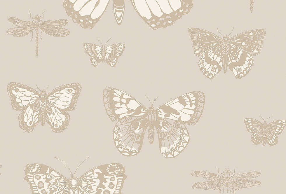 Cole & Son - Whimsical Butterflies & Dragonflies Grey 103/15064