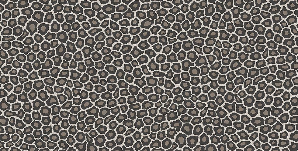 Cole & Son - Ardmore Senzo Spot Black + White 109/6031