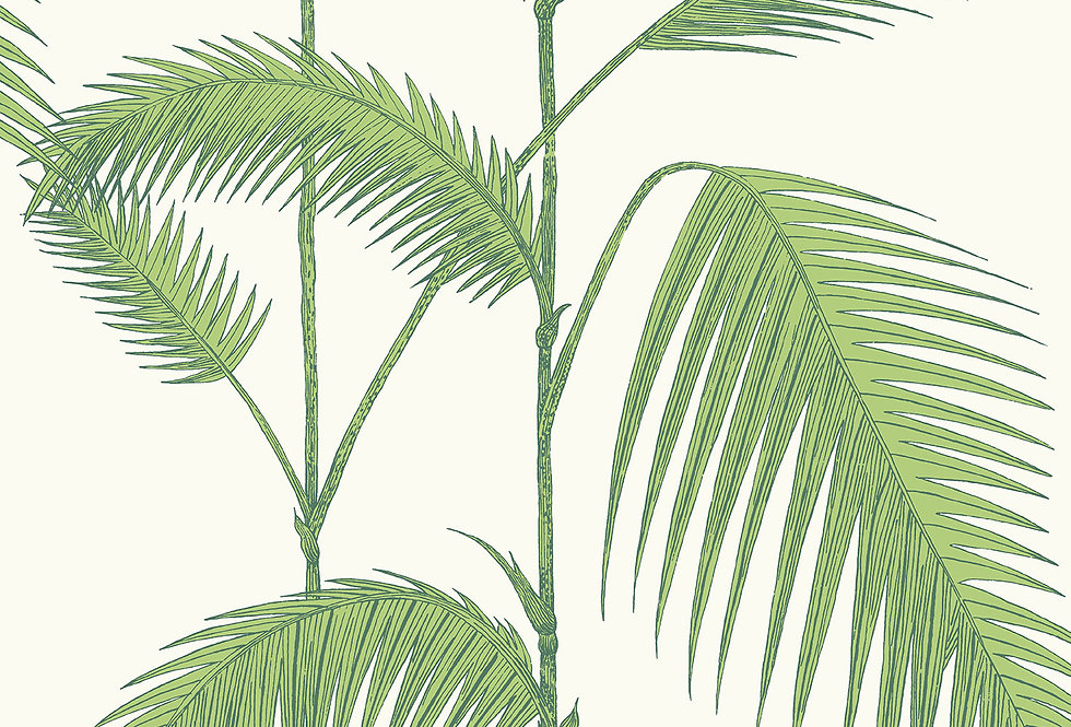 Cole & Son - Contemporary Restyled Palm Green on White 95/1009