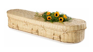 Bamboo £540