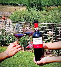 Chianti Classico DOCG in vineyards.JPG