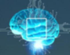 brain_dienstleistung.jpg