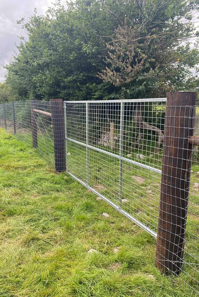 Metal gate resized
