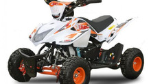 Quad Can-Am