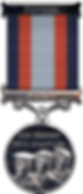 Medal of Bravery.png