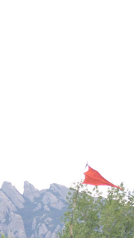 flagtwo.jpg