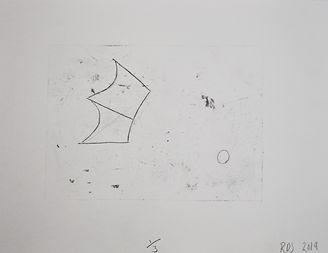 fossilprint.jpg