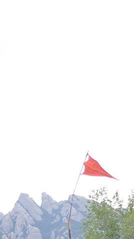 flagone.jpg