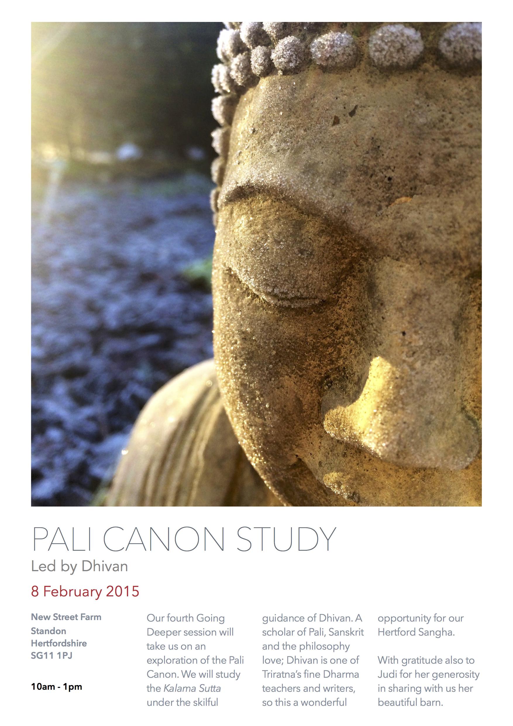 Pali Canon Study - Dhivan