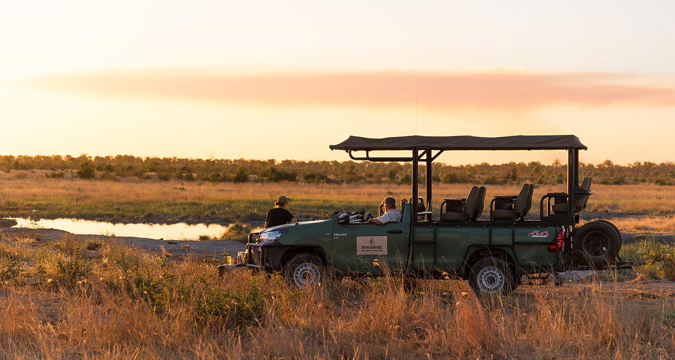 Toyota Game Drive Vehicle.jpg