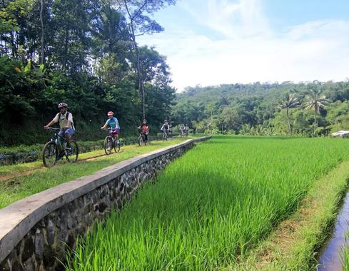 Cycling ti Candi Umbul.png