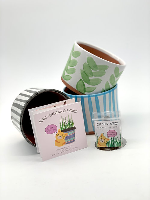 Plant Your Own Catgrass Kit
