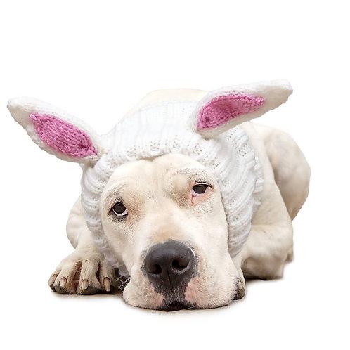 Bunny Rabbit Zoo Snood