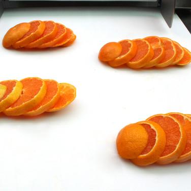 귤(Tangerine)
