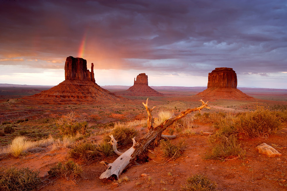 Monument Valley XXLarge.jpg