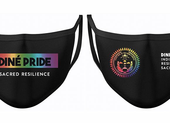 Pride Face Mask Bundle