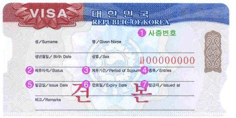 multiple entry visa