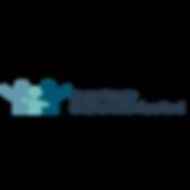 CSF horizontal logo (1).png