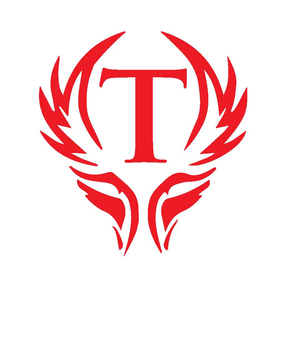 TriumphCapital logos1 (09+15)-01