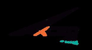 logo_excedflex.png