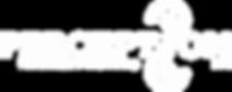 Perception Company Profile.png