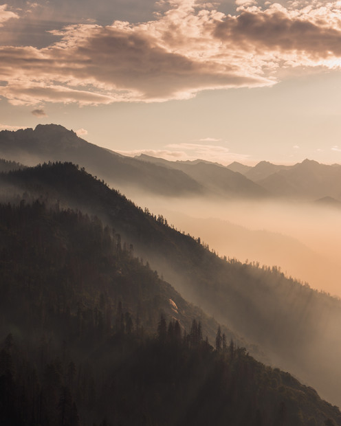 WILDFIRE MORNING