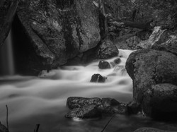 Mosquito_stream_long_exp_bw