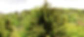 Ferme d'Essertfallon ecovillage – fermes