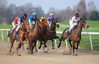 race-track-3049862_1920_edited.jpg