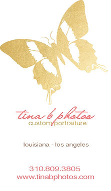 tinab new logo5butterflygoldvert2.jpg